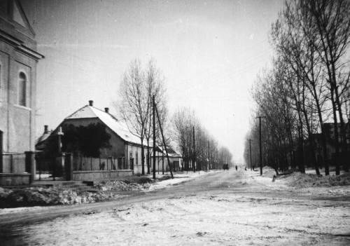 A Fõ utca a kettõs nyárfasorral az 1950-es évek elején.